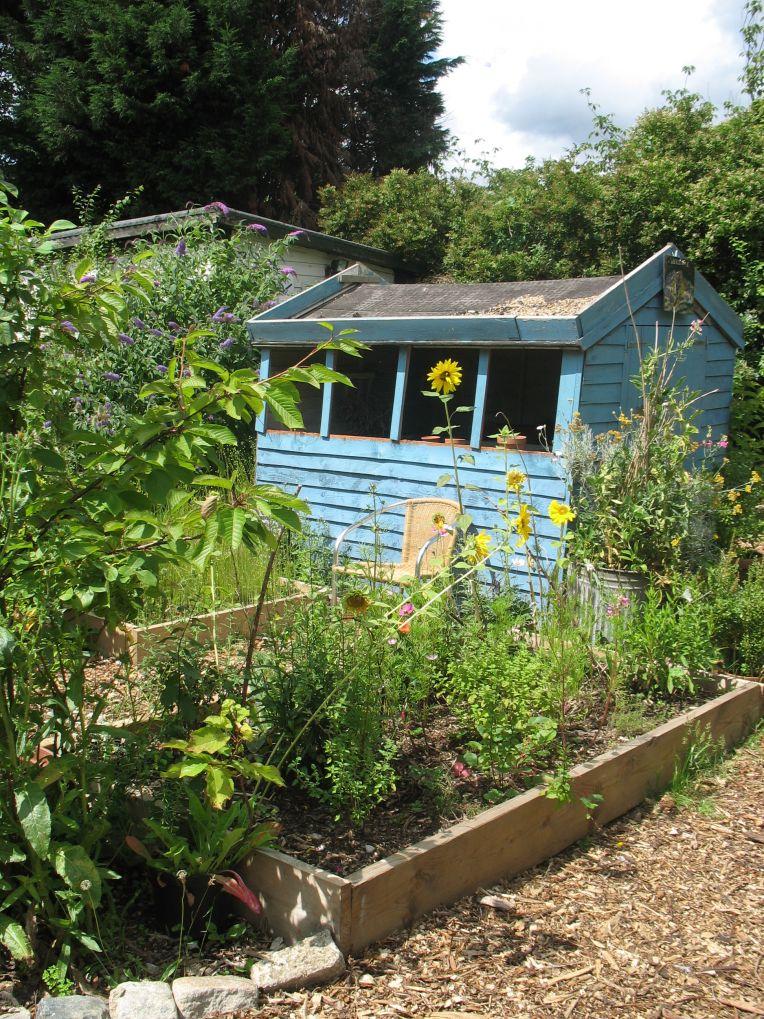 garden, Mayow Park Community Garden