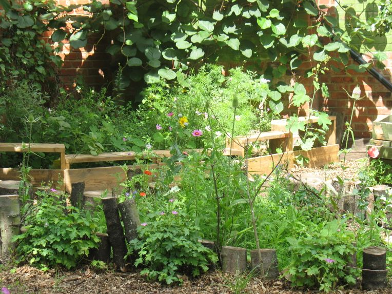 Mayow Park Community Garden
