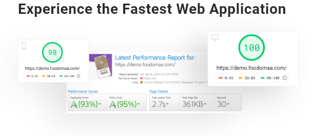 Experience the Fastest Web Application 100/100 Speed