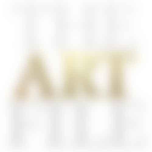The Art File logo