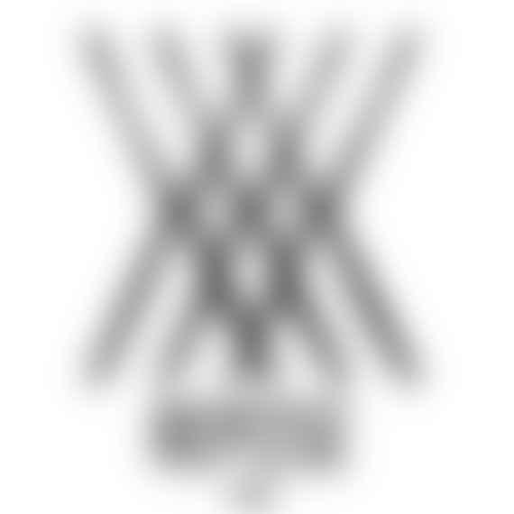 Repose Ams logo