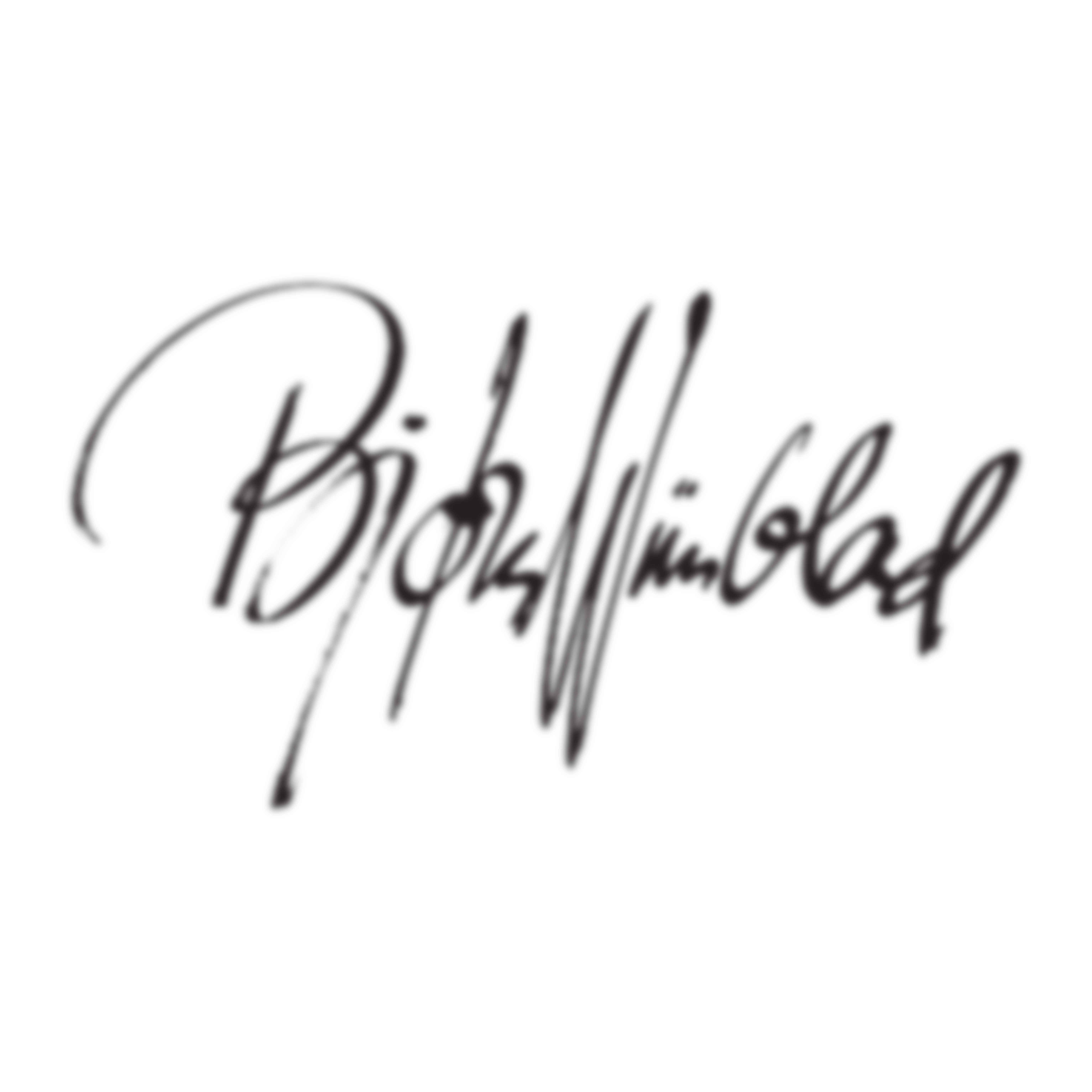 Bjorn Wiinblad logo