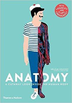 Thames & Hudson Anatomy A Cutaway Look Inside The Human Body Book