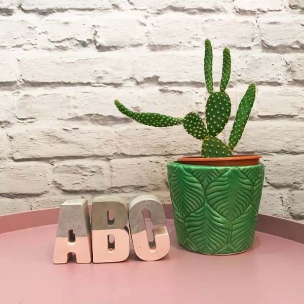 Lily Loves Shopping Concrete And Blush Pink Letters