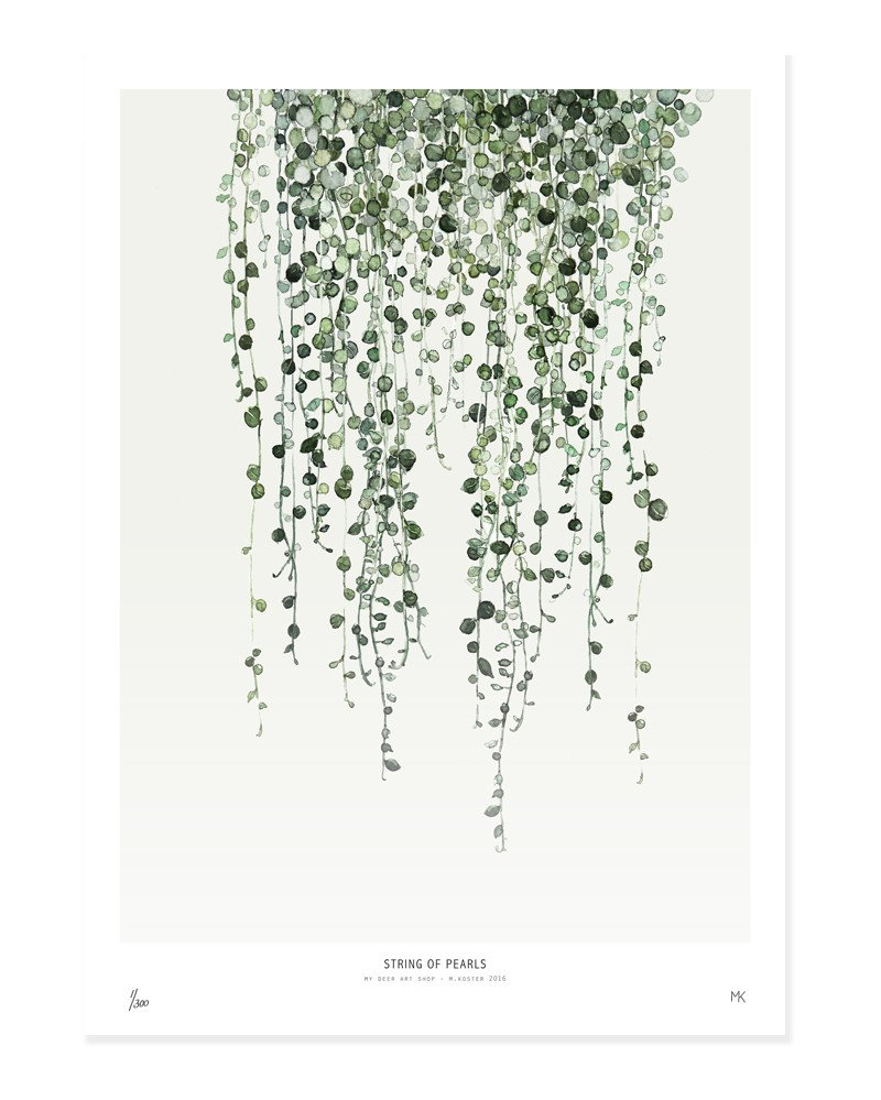 My Deer Art X-Large String Of Pearls Botanic Print