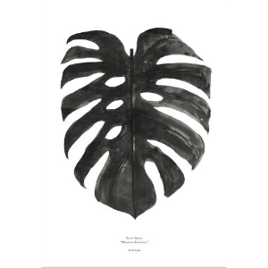 Monstera Deliciosa Signed Black + White Print -  A3