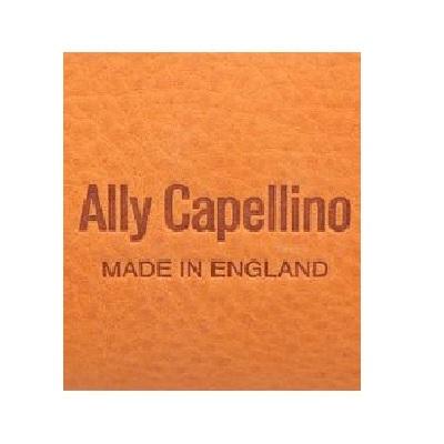 Ally Capellino