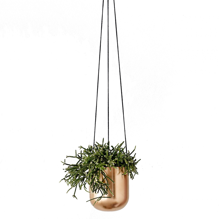 Trouva Metal Hanging Flower Pot