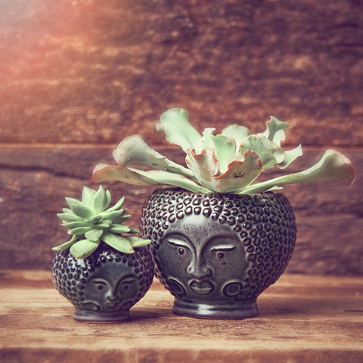 Madam Stoltz Bali Pot