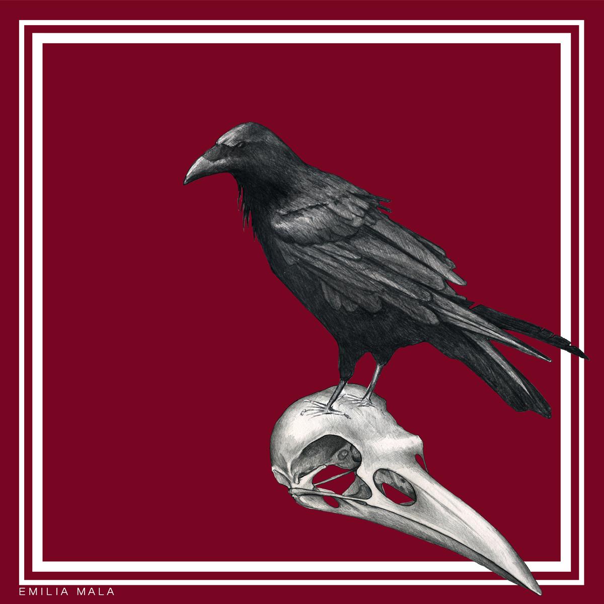 Emilia Crow