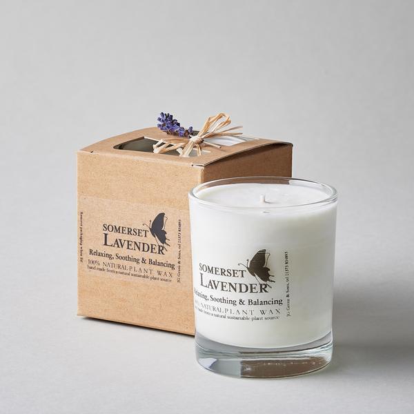 Somerset Lavender Votive Lavender Plant Wax Candle