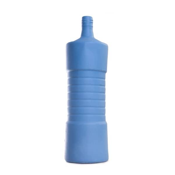 Foekje Fleur Bottle Vase 5