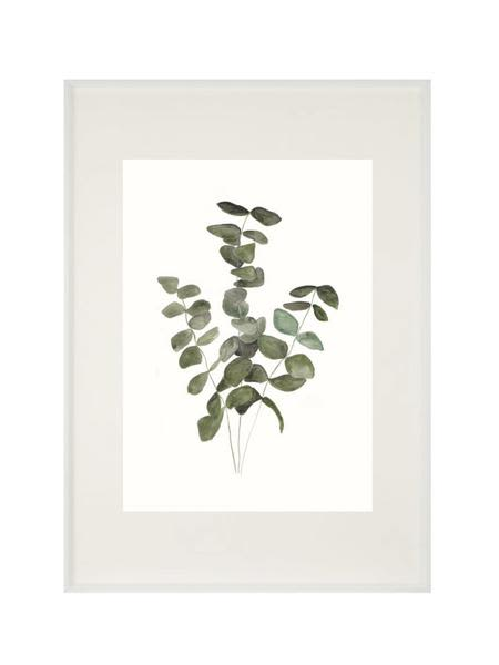 Meylor A 4 Eucalyptus Print