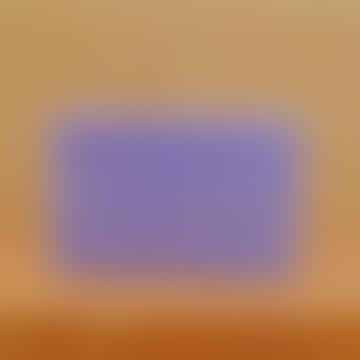 Savon de Marseille Lavender 250g Soap