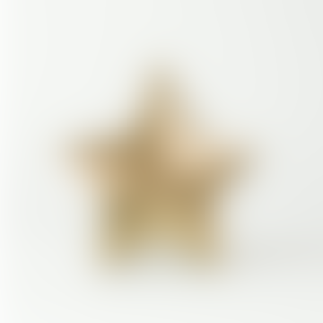 Small Brass Abesso Star Pot