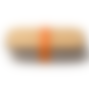 Black + Blum Orange Stainless Steel Sandwich Box