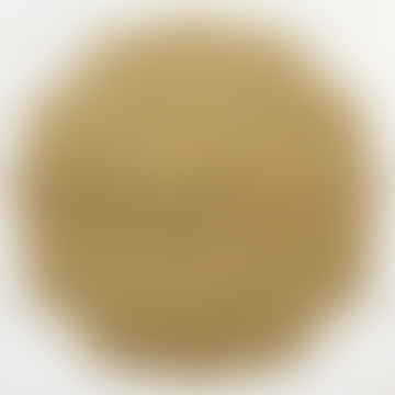 Gold Medallion Paper Placemats  - Set Of 12