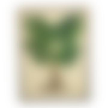 Framed Green Plant Print (30x40)