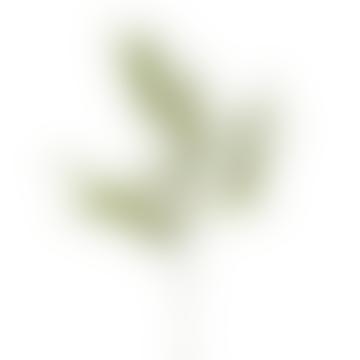 Flocked Asparagus Spray Decor