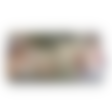 Disaster Designs Moomin Dangerous Journey Wallet