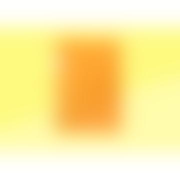 sous-bois Stalogy B 5 Notebook Yellow