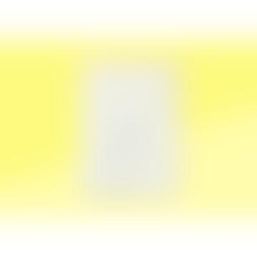 Midori A 5 Dot Grid Md Notebook
