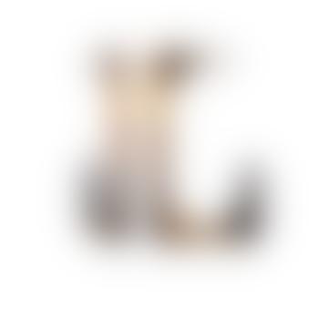 Parc Earrings | Classic Tortoise