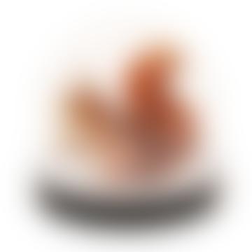 1031-22 Wonderball Squirrel Klevering 12999401