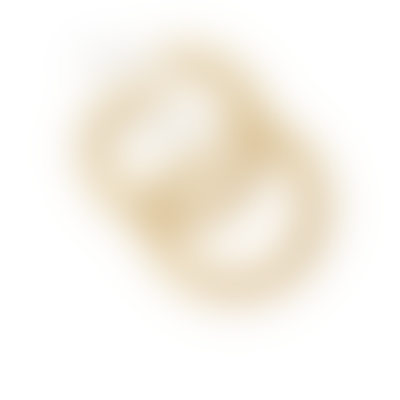 Tara Turn Earrings - Gold Plating