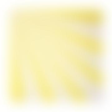 Meri Meri Pack of 20 Large Yellow Fan Stripe Napkins