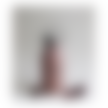 Cat Rose Stainless Steel Anker Water Bottle