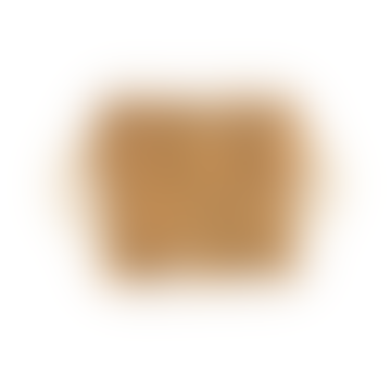 LIGA Five Fish Cork Trivet