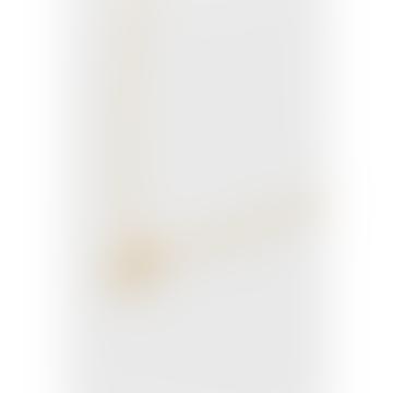 Estella Bartlett  Open Star Necklace - Gold