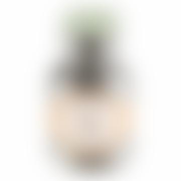 300ml Mint Stainless Steel Bottle