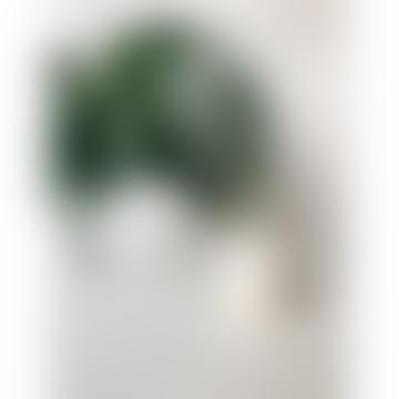 220ml White Ceramic Marrakesh Candle