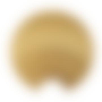AYTM Small Gold Concha Knob