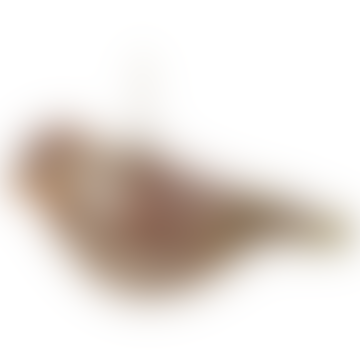 14cm Brown Gold Glass Bird