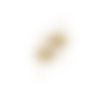 Tara Hanger Earring Gold Plating