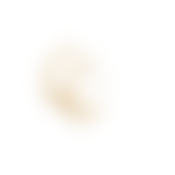 Ashley Hook Earring Gold Plating