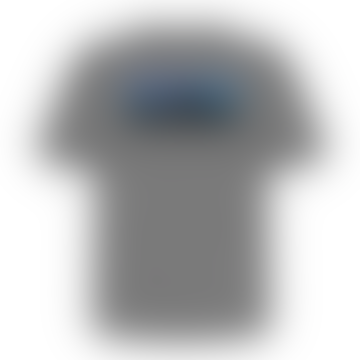 Patagonia Responsibility Gray Print T Shirt
