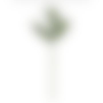 125cm Cat Palm Leaves