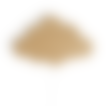 Oiled Oak Cloud Lamp