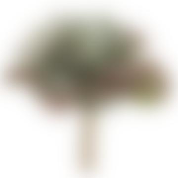 Faux Succulent Echeveria Plant