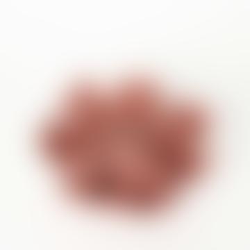 Aprikosen-Porzellan-Blume