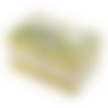 Trousselier Green Peter Rabbit Musical Jewelry Box