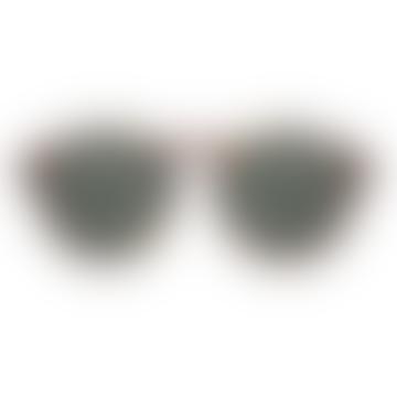 Devon Tortoise Sunglasses Unisex