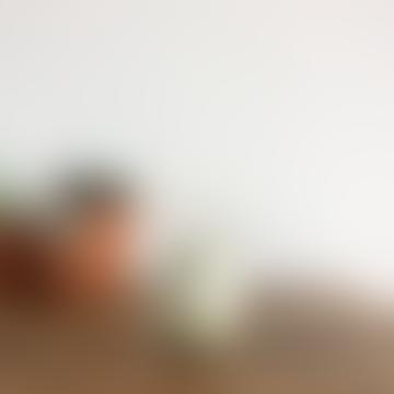 20CL Nuances Green Koom Tumbler