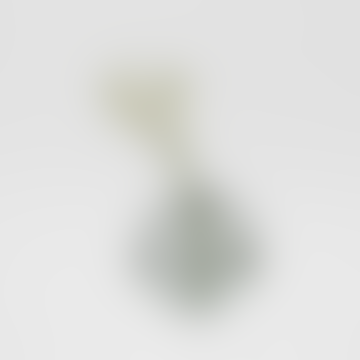 About Form and Funktion Smoke 802080S Flower Bubble Standing Vase