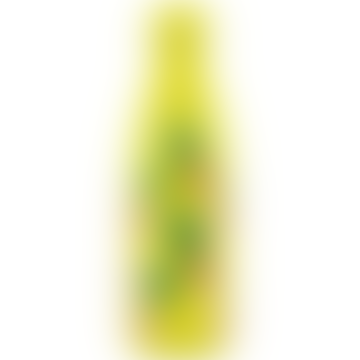 Chilly's Bottles 500ml Pineapple Icon Edition Drinks Bottle