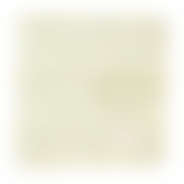 Limona Petit White Lace Napkin in A Set of 2